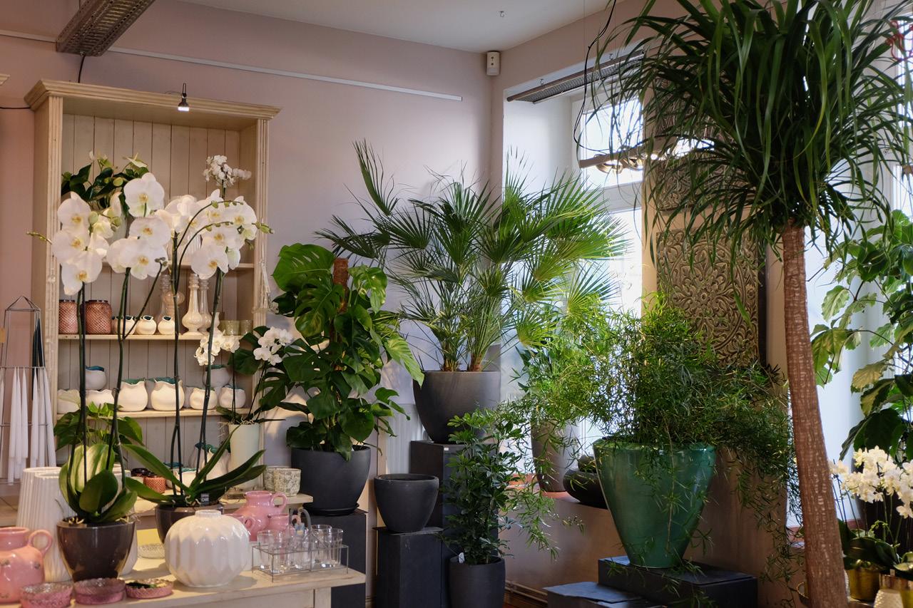 unser ladengesch ft frau rose floristik berlin blumendekorationen f r events und hochzeiten. Black Bedroom Furniture Sets. Home Design Ideas