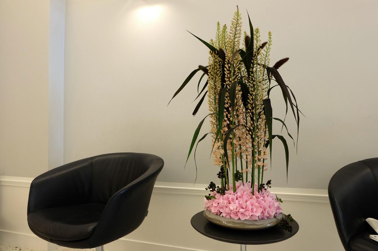 Blumen Und Pflanzen Abo blumen und pflanzen abo blumen pflanzen abo jetzt im abo 2 monate gratis blumen